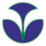 Vijay Wood Industries