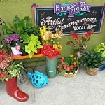Your Enchanted Florist