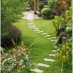 Acorn Landscaping