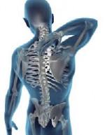 Back Pain - Best Chiropractic Care in Cambridge