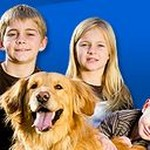 Larchmont Animal  Clinic - Larchmont Animal Clinic providing top veterinary care since 1974